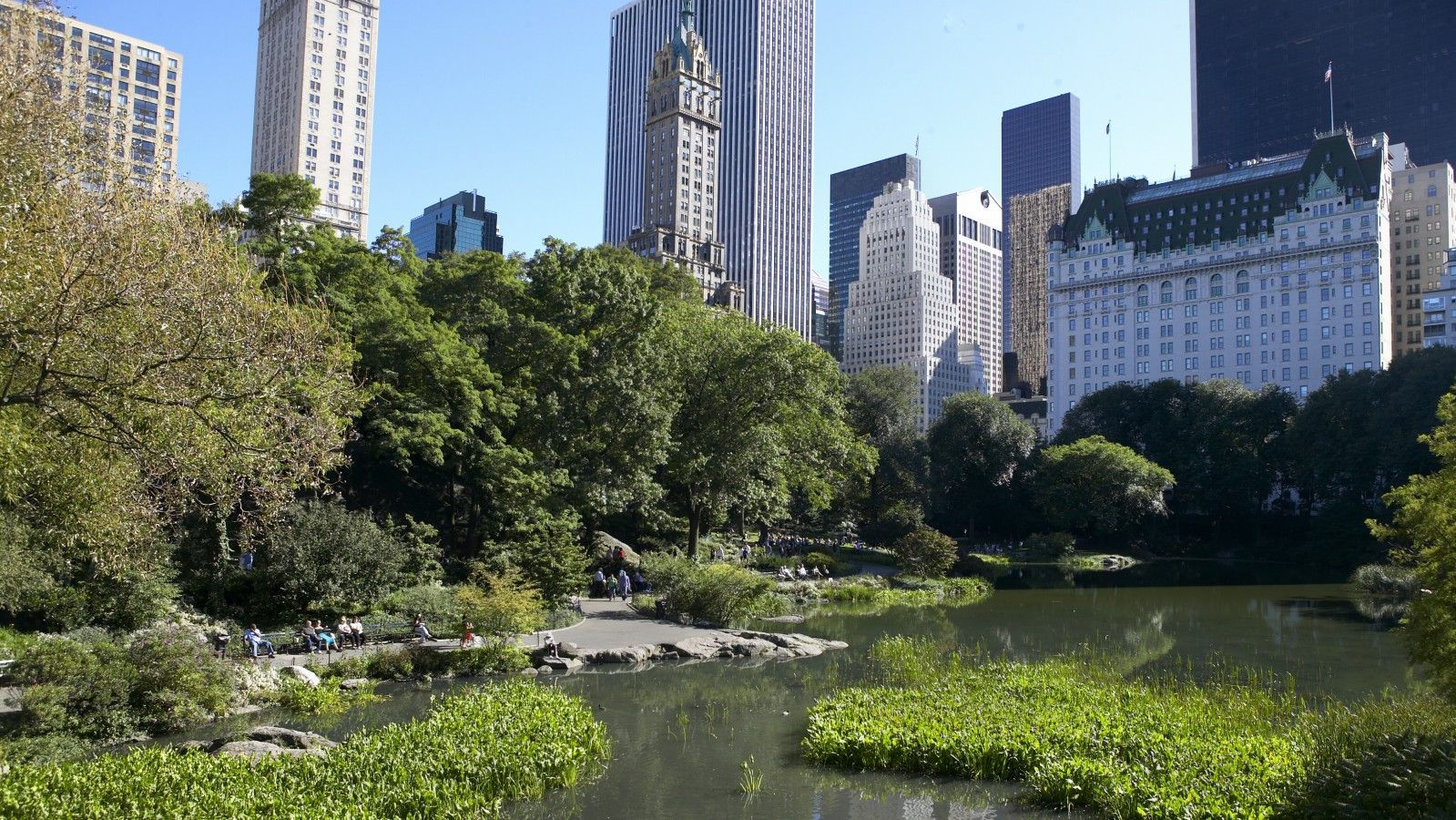 Things to Do in NYC | Central Park